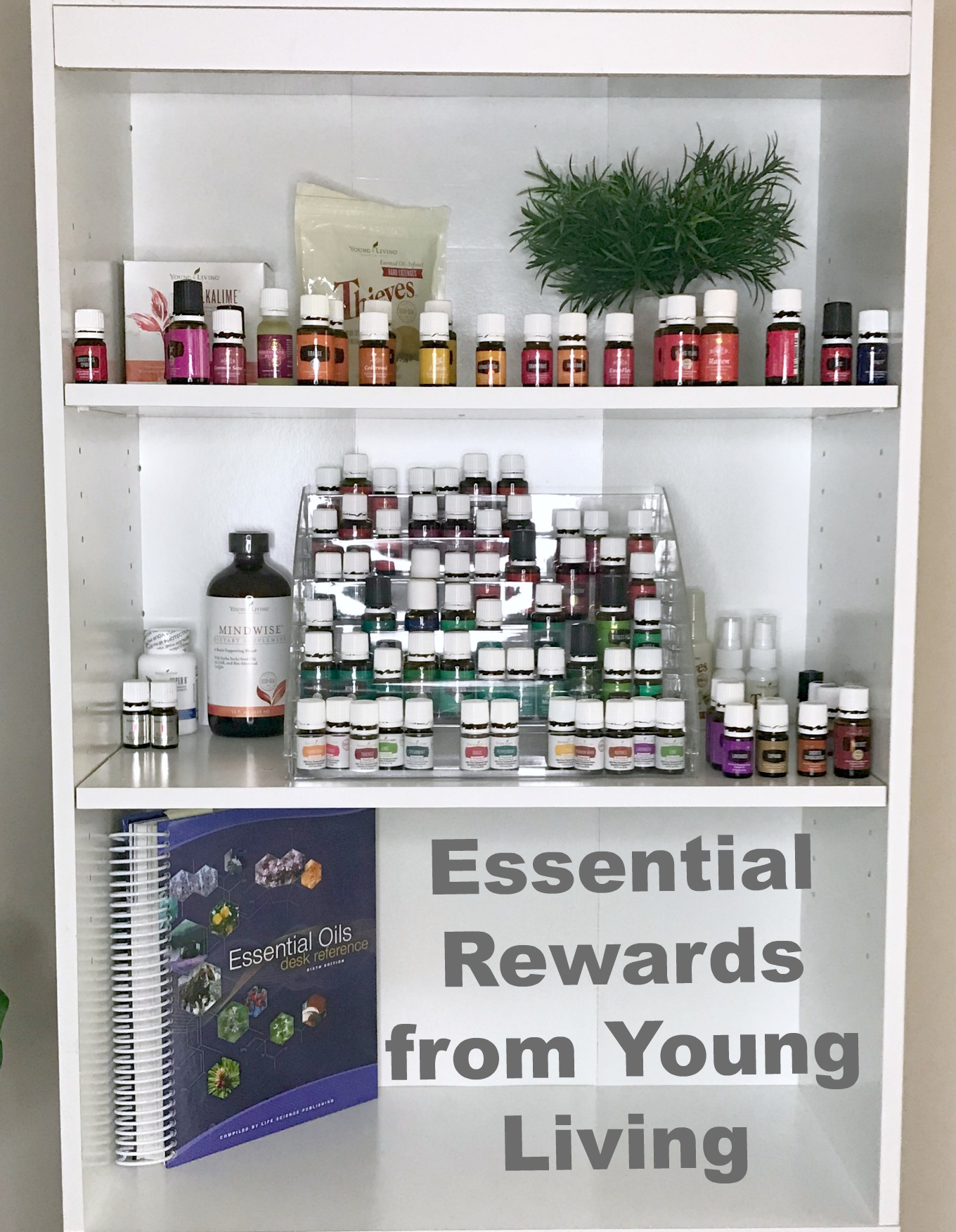 Why I Use Essential Rewards With Young Living