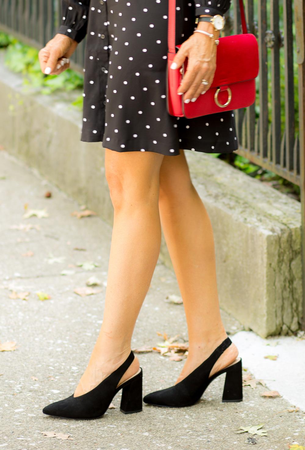Classic Polka Dot Dress from LOFT